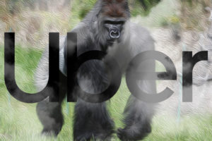 APAC News Uber a market gorilla with very little transparency